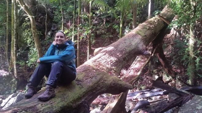 Christina sitting happily at Washpool waterfalls
