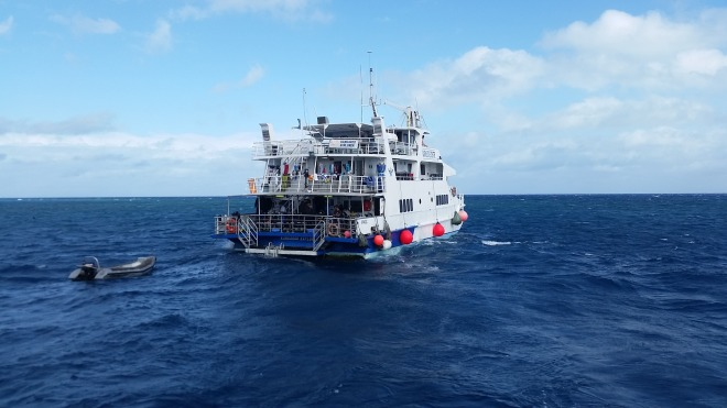 The liveaboard dive boat Kangaroo Explorer (operated by Cairns Dive Center)