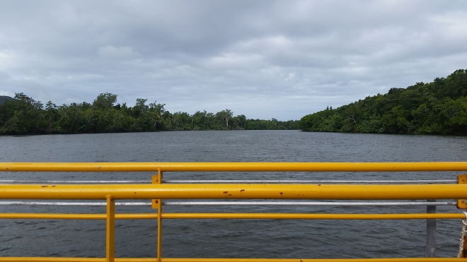 The Daintree River via the ferry