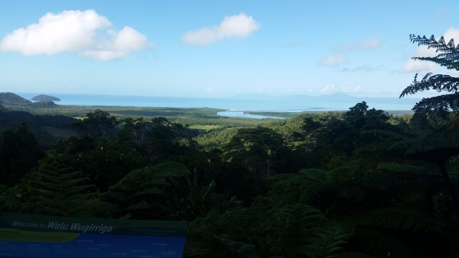 Alexander Lookout in Daintree National Park