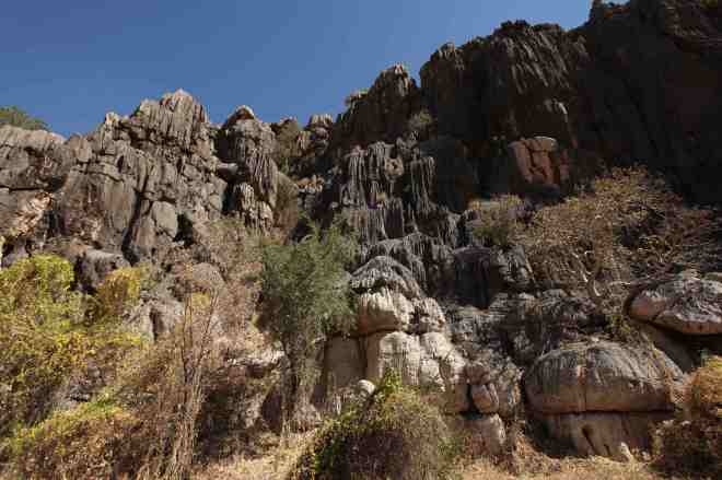 Pointy rocks in Geikie Gorge