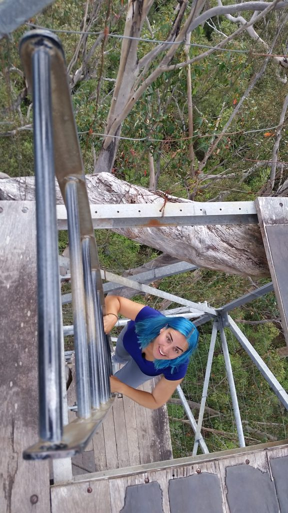 Christina going down the Dave Evans Bicentennial Tree - 71m tall.