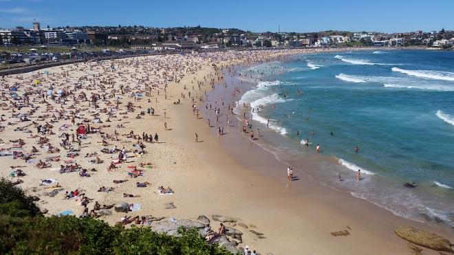 Bondi Beach in peak summer